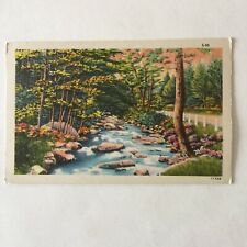 Trout Stream County Roadside Landscape Scene Unposted Postcard