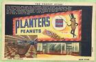 Mr Peanut Planters Store Broadway N Y Vintage Postcard
