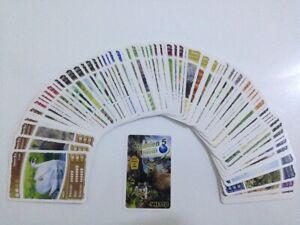 Netto - Ozeanien 5 Zurück nach Hause 85 verschiedene Basiskarten