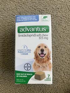 Advantus Flea Soft Chews 37.5 mg Large Dogs 23-110 Pounds 7 Chews