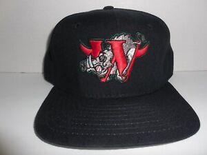 Vintage WINSTON-SALEM WARTHOGS Minor League Baseball Snapback Hat NWOT