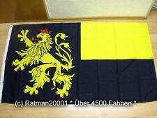 Fahnen Flagge Pfalz - 90 x 150 cm