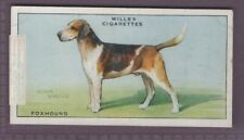 Foxhound Fox Hunting Dog Canine Pet 1930s Ad Trade Card