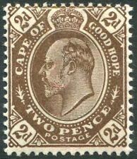 CAPE OF GOOD HOPE-1904 2d Brown Sg 72 MOUNTED MINT V35361
