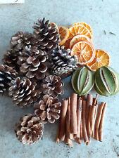 Christmas Ribbon Floristry Xmas Craft Items - Dried Fruits, Cinnamon, Ribbons