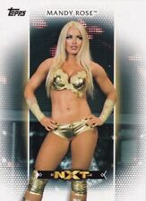 2017 Topps WWE Women's Division Moments Rookie Mandy Rose R-8 & NXT-19 Lot SP