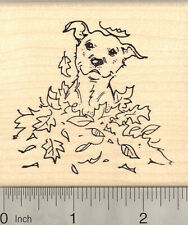 American Pitbull Terrier Dog Rubber Stamp, in Autumn Leaves K22615 Wm