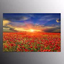 FRAMED Small Flowers Canvas Art Print For Home Decor Wall Art Canvas Painting