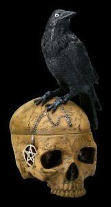 Ritual Schädel Schatulle mit Krähe - Salems Familiar - Totenkopf Deko Figur Hexe