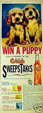 1961 Orange Crush Bottle Cocker Spaniel Puppy Dogs Soda~Pop ODDBALL Promo AD
