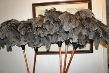 One (1) soft grey ostrich feather duster 80cm wood stained handle 1st grade