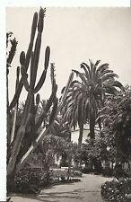 Spain Postcard - Las Palmas De Gran Canaria - Jardines Municipales   U419