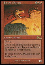 MTG SHIVAN PHOENIX - FENICE DI SHIV - UL - MAGIC