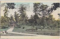 Indiana Ind Postcard 1908 MUNCIE McCULLOCH PARK Bear Pit Hand Colored