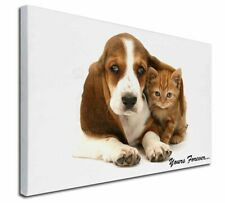 More details for basset hound and cat 'yours forever' x-large 30
