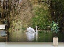 3D White Swan British Lake P71 Animal Wallpaper Mural Self-adhesive Removable Zo