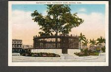 post card Fraternity Tree Havana Cuba/Nassau Bahamas to Seattle WA 1955