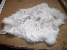 NICE tanned JACK RABBIT FUR pelt skin NATIVE CRAFTS supplies bag purse pouch R10