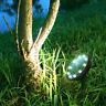 Solar-Bodenbeleuchtung 10 LED wasserdichte Gartenlandschaft Weg Rasenlampe