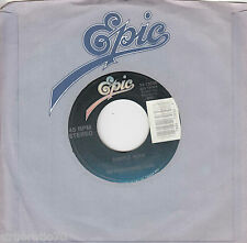 THE CHARLIE DANIELS BAND Simple Man / Ill Wind 45