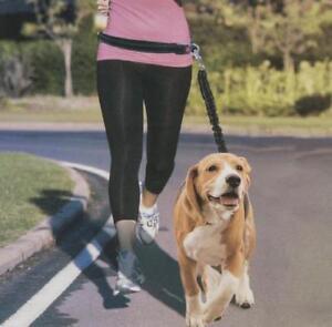 Hands Free Shock Absorbing Bungee Running Dog Leash Adjustable Waist Walk Run ..