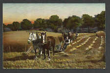 Ca 1906 PPC HAY BALING TUCKS POST CARD CELLULOID, MINT