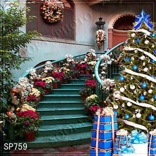 Christmas 10'x10' Computer-painted Scenic Photo Background Backdrop SP759B881