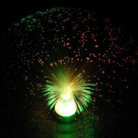 2019 LED Star Wedding Holiday Decor Light Multi Color Changing Fiber Optic Lamp