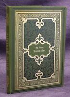 Theodor Storm Immensee 1898 Belletristik Dichter Lyrik Schreiben js