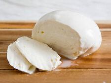 Mozzarella Cheese Home Making Starter Kit 10 Litres/2.6G Recipe Vegetable Rennet