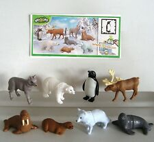 KINDER FERRERO SURPRISE SERIE COMPLETA POLAR NATOONS ANIMAL PLANET +1 CARTINA