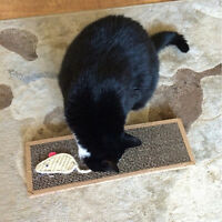 Pet Cat Scratching Board Scratcher Mat Post Pole Bed Pad With Catnip-Funny