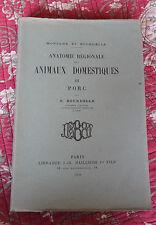 1920 Anatomie animaux domestiques LE PORC N°III Bourdelle zoologie