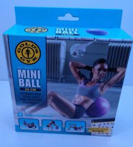 Gold's Gym 25 CM Mini Ball Purple Exercise Fitness New (Open Box) ANTI-BURST
