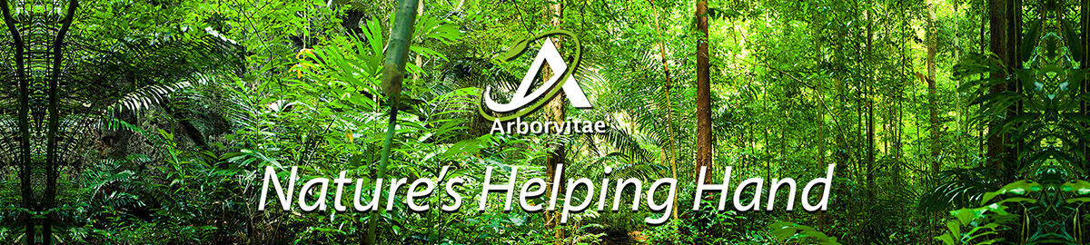 Arborvitae Health and Wellbeing