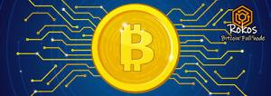 Rokos OS for Raspberry Pi - 16GB Micro SD. Bitcoin Focused OS for Node & Mining!