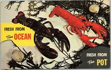 postcard lobster - Lobster - Fresh from the Ocean  Fresh from the Pot