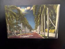 Vintage 1950's Miami Beach Florida Royal Palm Ave Souvenir Postmarked Postcard