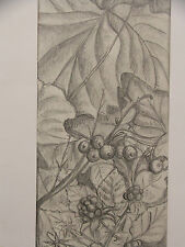 Original Pencil sketch Undergrowth,Portland Park by artist Jonathan Annable