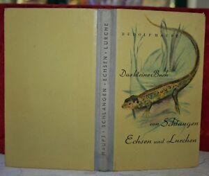 Haupt, Das kleine Buch von Schlangen, Echsen und Lurchen