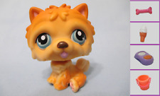 Littlest Pet Shop PUPPY DOG CHOW CHOW BROWN #117 + 1 FREE Access. 100% Authentic