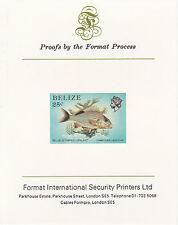 Belize 5111 - 1984 Vita Marina 25c HUNGARIAN SU CARTA FORMATO PROVA internazionale