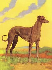 ART PRINT POSTER PAINTING PORTRAIT ANIMAL DOG HOUND YELLOW SKY NOFL0815