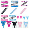 Boys Girls Age 13 Banners 13th Birthday Party Bunting Flag Banners Pink Blue