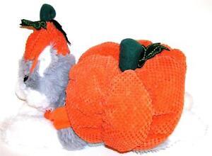Animal Welfare League Benefit Halloween Costume Pet Parade DOG PUMPKIN SIZE XXS