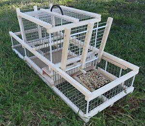 Piège de chasse // Cage Avec 2 Pièges // Cage à Trébuchet plus cage appelant