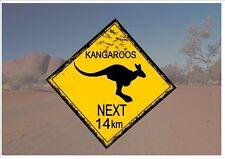 Segnale STRADALE stile australiano Australia Cartello Stradale Novità Divertente CANGURI OUTBACK