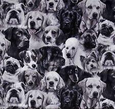 Dogs BLACK & WHITE CHIENS Patchwork substances substances Patchwork Tiermotive Coton