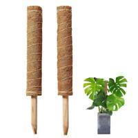 COIR TOTEM GARDEN STAKE Coconut Fibre 60 cm Or 90 cm-Brand New