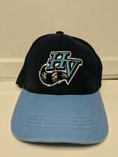 Hudson Valley Renegades Minor League Team Hat Tampa Bay Rays Affiliate Cap